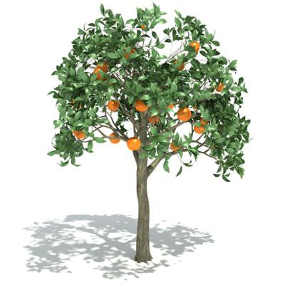 GrowFX-Orange