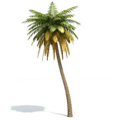 GrowFX-Palm