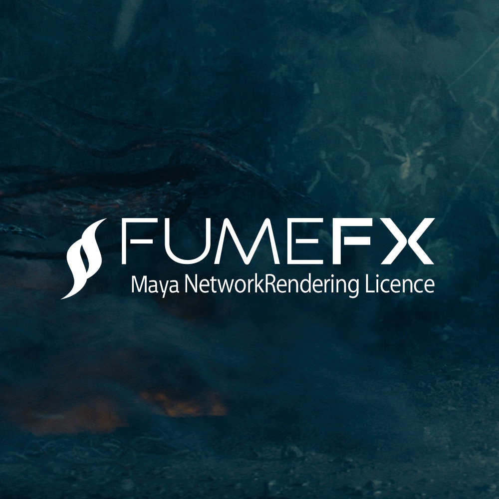 SS-FFXMNR
