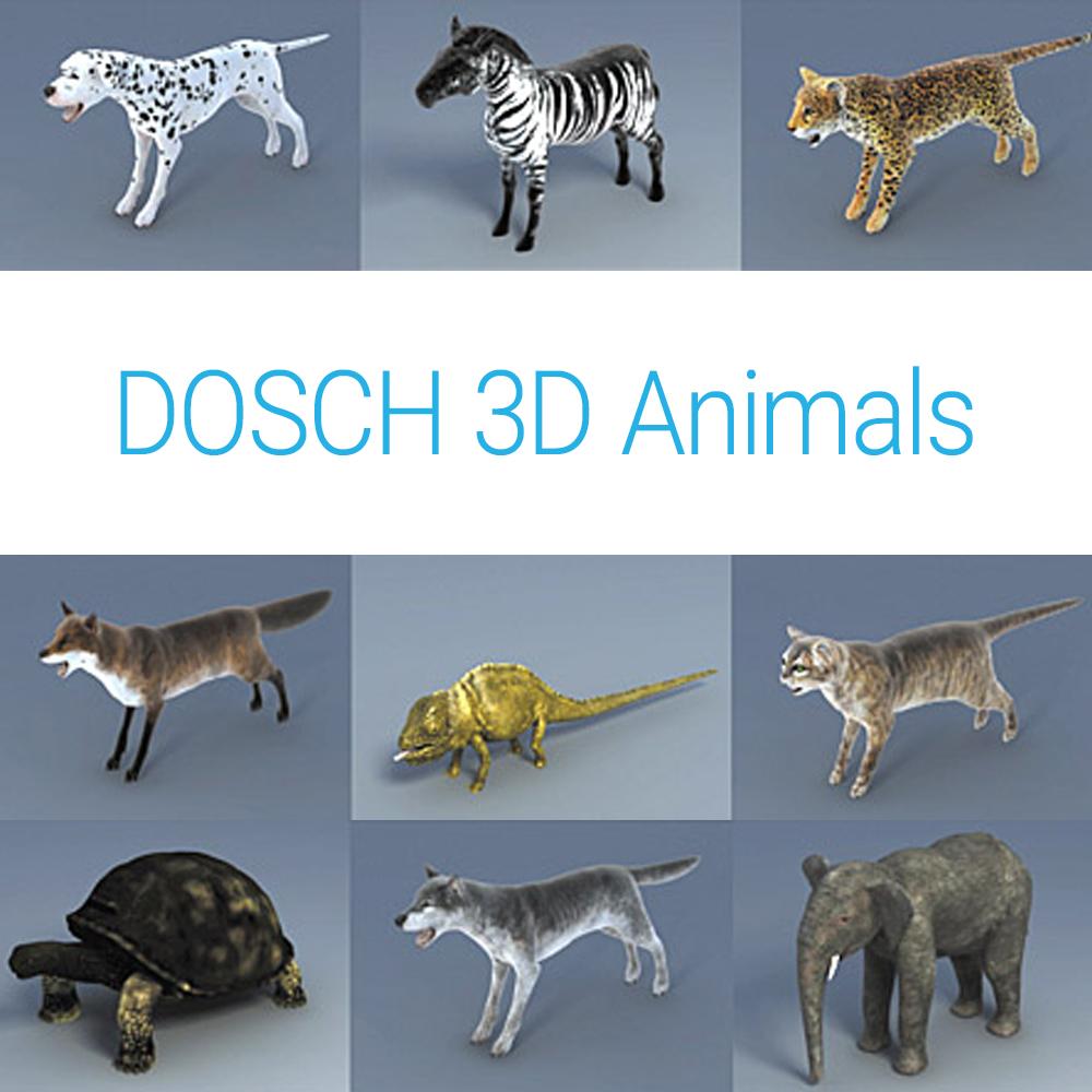 D3D-AN