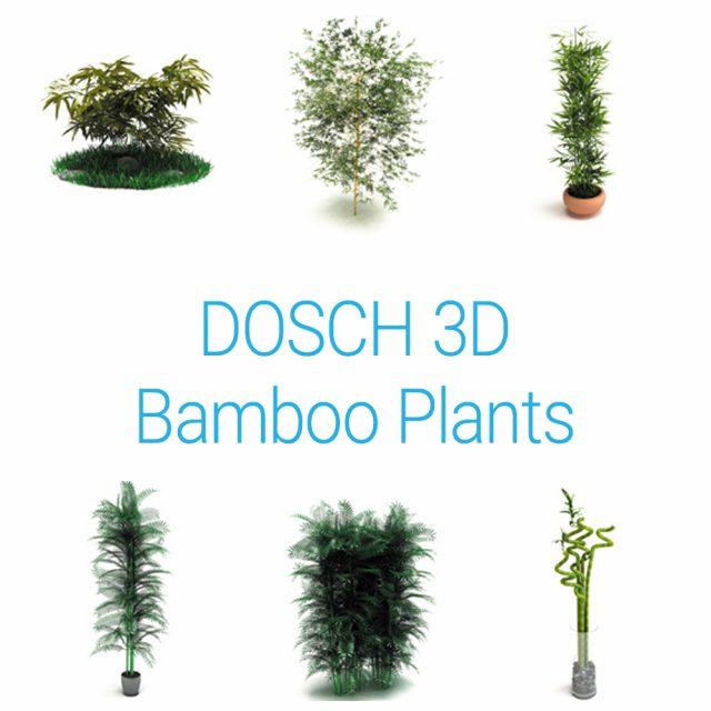 D3D-BAMPLA