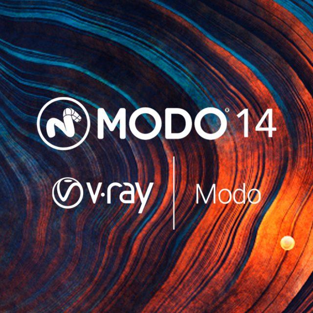 FD-MD13/vmo