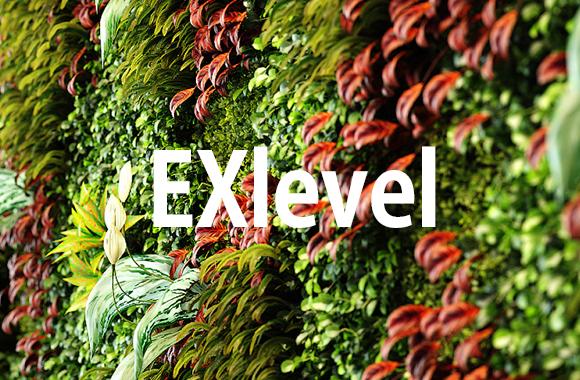 Exlevel