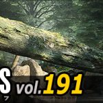 EVERMOTION : archmodels vol.191 [樹木]がリリース (3dsMax,CINEMA4D用素材集)